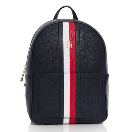 Picture of Tommy Hilfiger AW0AW10096 DW5